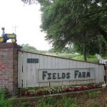 Fields Farm